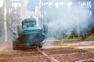 Lawnmower article (2.2020)