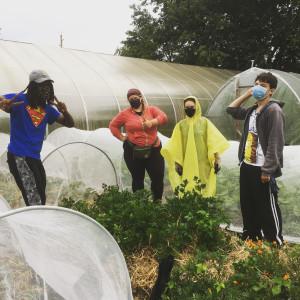 Garden workers, rainy day